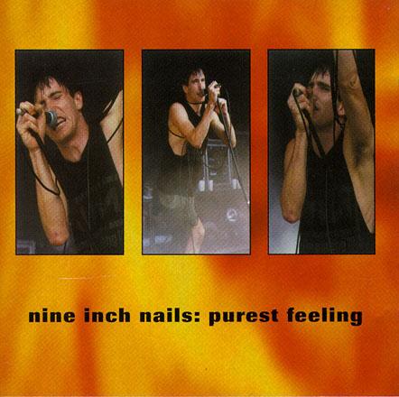 nine inch nails discography torrent